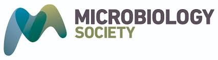 Tasha Mellins-Cohen, Microbiology Society